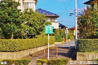 成田ニュータウン (10).jpg