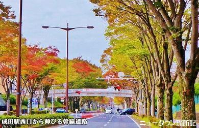 成田ニュータウン (11).jpg