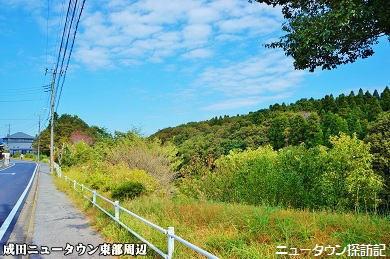 成田ニュータウン (13).jpg
