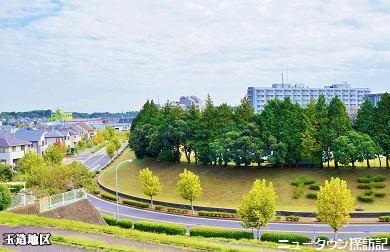 成田ニュータウン (2).jpg
