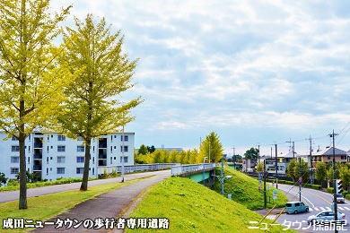 成田ニュータウン (4).jpg