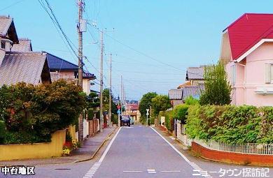 成田ニュータウン (7).jpg