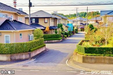 成田ニュータウン (8).jpg