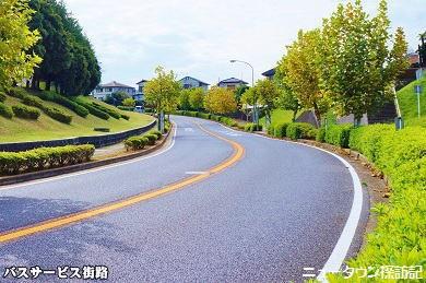 成田ニュータウン (9).jpg