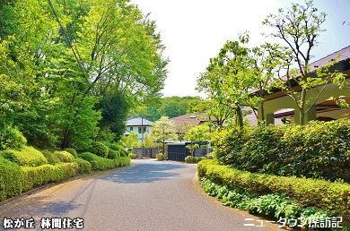 松が丘 (14).jpg