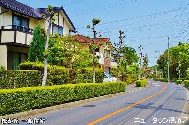 松が丘 (15).jpg