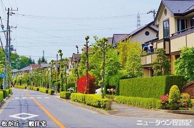 松が丘 (16).jpg