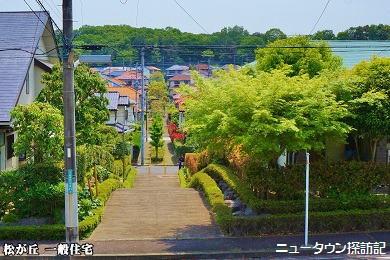 松が丘 (17).jpg
