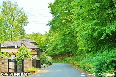 松が丘 (18).jpg
