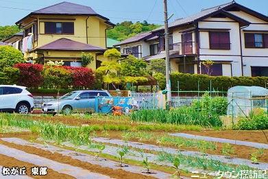 松が丘 (21).jpg