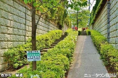 松が丘 (23).jpg