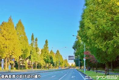 asumigaoka (11).jpg