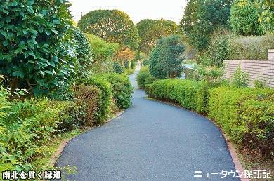 asumigaoka (12).jpg
