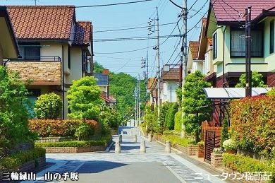 miwamidoriyama (10).jpg