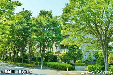 miwamidoriyama (11).jpg