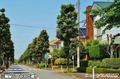 miwamidoriyama (2).jpg