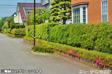 miwamidoriyama (4).jpg
