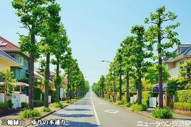 miwamidoriyama (6).jpg