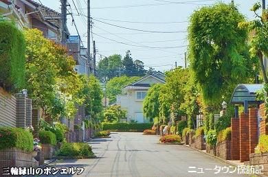 miwamidoriyama (9).jpg